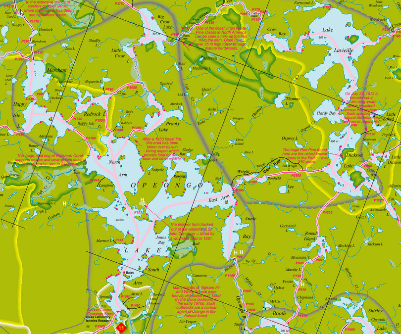 _Opeongo Map