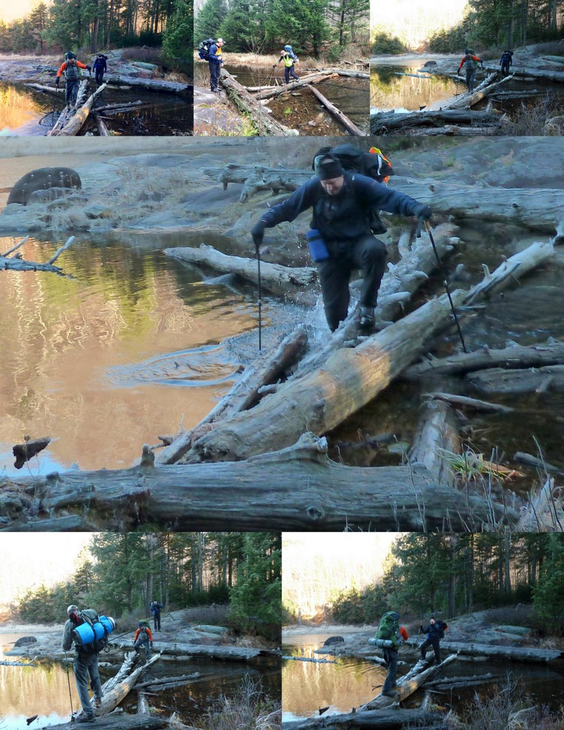Log Crossing
